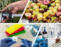 이태리 9일(농업/과수재배 협동조합)