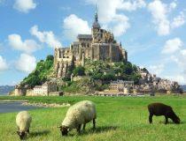 프랑스 일주 11일